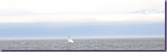 Sailing Crop