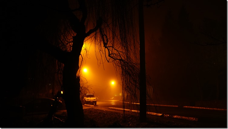 night fog 040